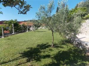 DSCN3931 300x225 - Kratka crtica o vrtu iznad franjevačkog samostana u Cavtatu