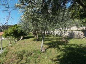 DSCN3934 300x225 - Kratka crtica o vrtu iznad franjevačkog samostana u Cavtatu