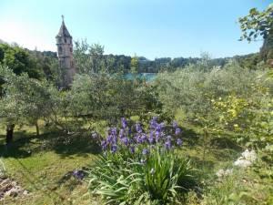 DSCN3939 300x225 - Kratka crtica o vrtu iznad franjevačkog samostana u Cavtatu