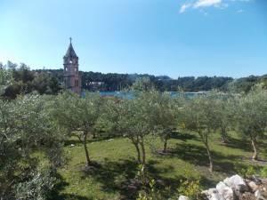 DSCN3942 300x225 - Kratka crtica o vrtu iznad franjevačkog samostana u Cavtatu