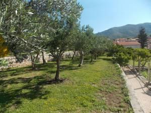 DSCN3947 300x225 - Kratka crtica o vrtu iznad franjevačkog samostana u Cavtatu