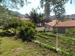 DSCN3949 300x225 - Kratka crtica o vrtu iznad franjevačkog samostana u Cavtatu
