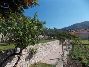 DSCN3952 300x225 - Kratka crtica o vrtu iznad franjevačkog samostana u Cavtatu
