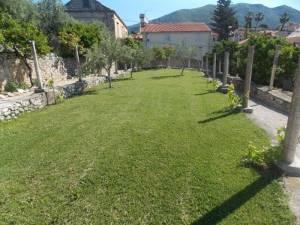 DSCN3961 300x225 - Kratka crtica o vrtu iznad franjevačkog samostana u Cavtatu