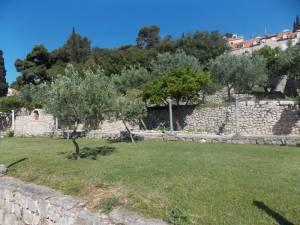DSCN3971 300x225 - Kratka crtica o vrtu iznad franjevačkog samostana u Cavtatu